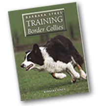 Training Border Collies